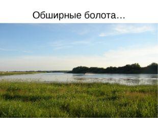 Обширные болота…