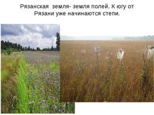 Рязанская земля- земля полей. К югу от Рязани уже начинаются степи.