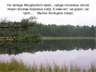 На западе Мещёрского края…среди сосновых лесов лежат восемь боровых озёр. К н