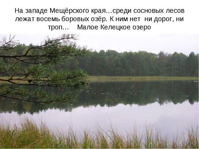 На западе Мещёрского края…среди сосновых лесов лежат восемь боровых озёр. К н...