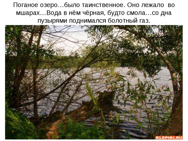 Поганое озеро…было таинственное. Оно лежало во мшарах…Вода в нём чёрная, будт...