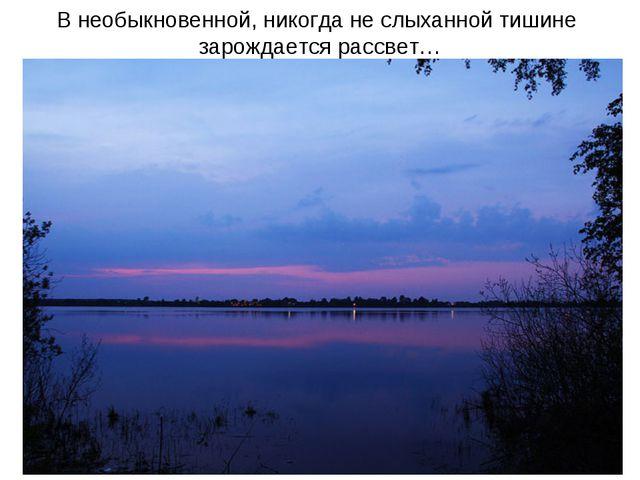 В необыкновенной, никогда не слыханной тишине зарождается рассвет…