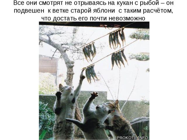 Все они смотрят не отрываясь на кукан с рыбой – он подвешен к ветке старой яб...