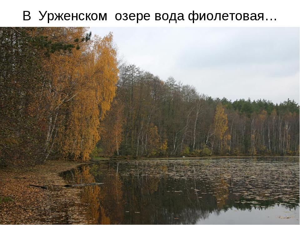 В Урженском озере вода фиолетовая…