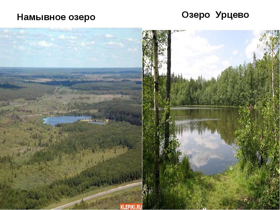 Намывное озеро Озеро Урцево