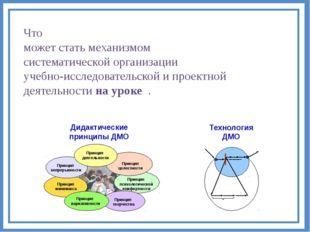 Что может стать механизмом систематической организации учебно-исследовательск