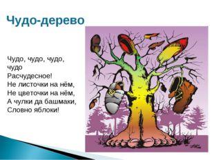 Чудо-дерево Чудо, чудо, чудо, чудо Расчудесное! Не листочки на нём, Не цветоч