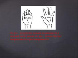На раз – подушечки пальцев поджимаются к верхней части ладони, на два – паль
