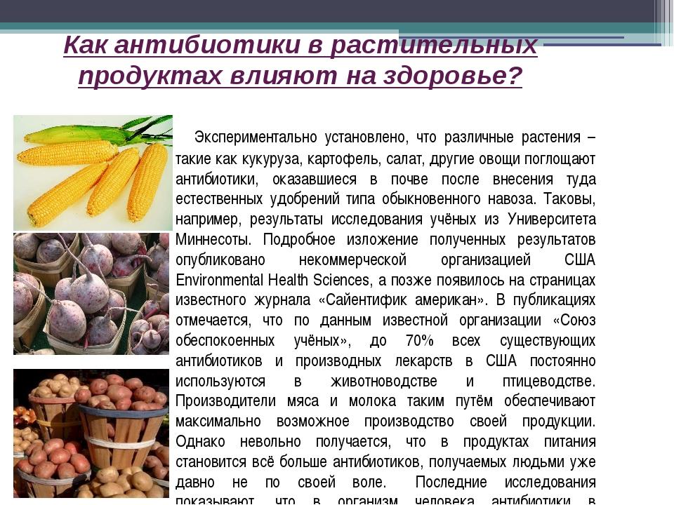Как антибиотики в растительных продуктах влияют на здоровье? Экспериментально...