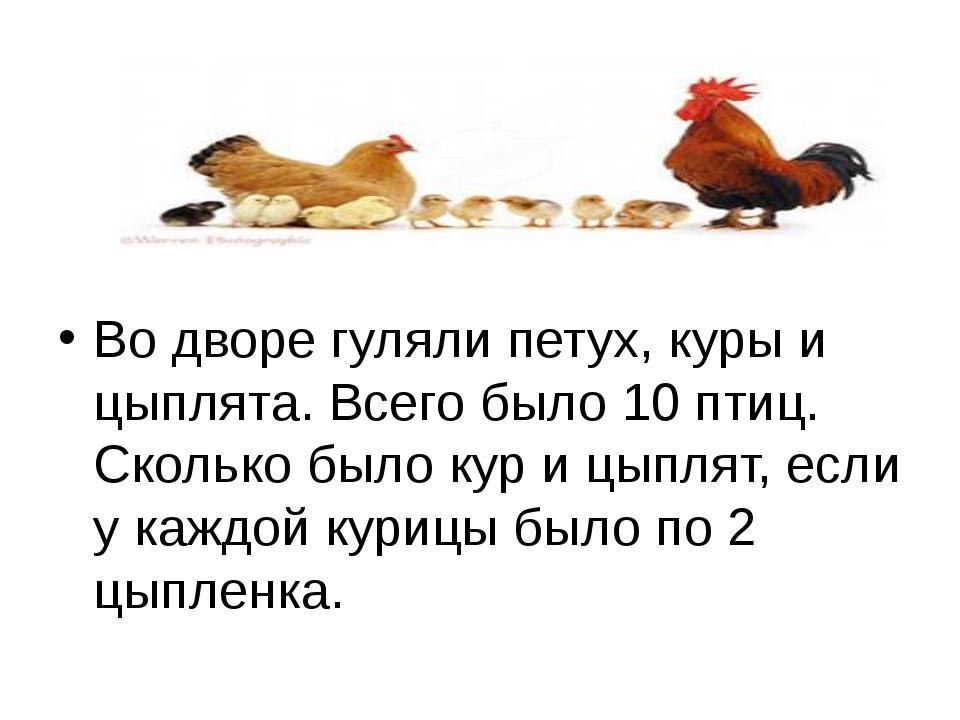 Во дворе гуляли петух, куры и цыплята. Всего было 10 птиц. Сколько было кур...