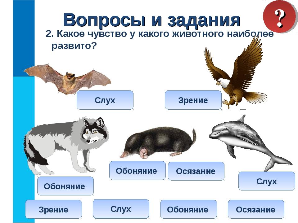 2. Какое чувство у какого животного наиболее развито? Вопросы и задания ? Зр...