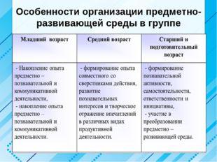 Особенности организации предметно- развивающей среды в группе