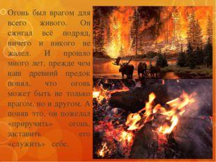 Огонь был врагом для всего живого. Он сжигал всё подряд, ничего и никого не ж