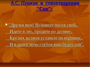 """А.С. Пушкин в стихотворении """"Сон"""": """"Друзья мои!Возьмите посох свой, Идите в"""