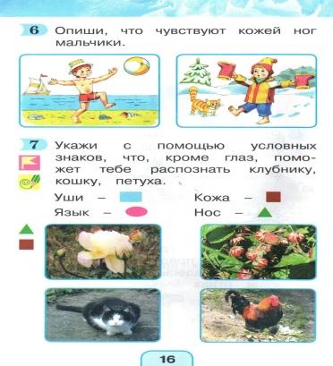 http://cs629313.vk.me/v629313223/1a608/M9BiXLp21vU.jpg