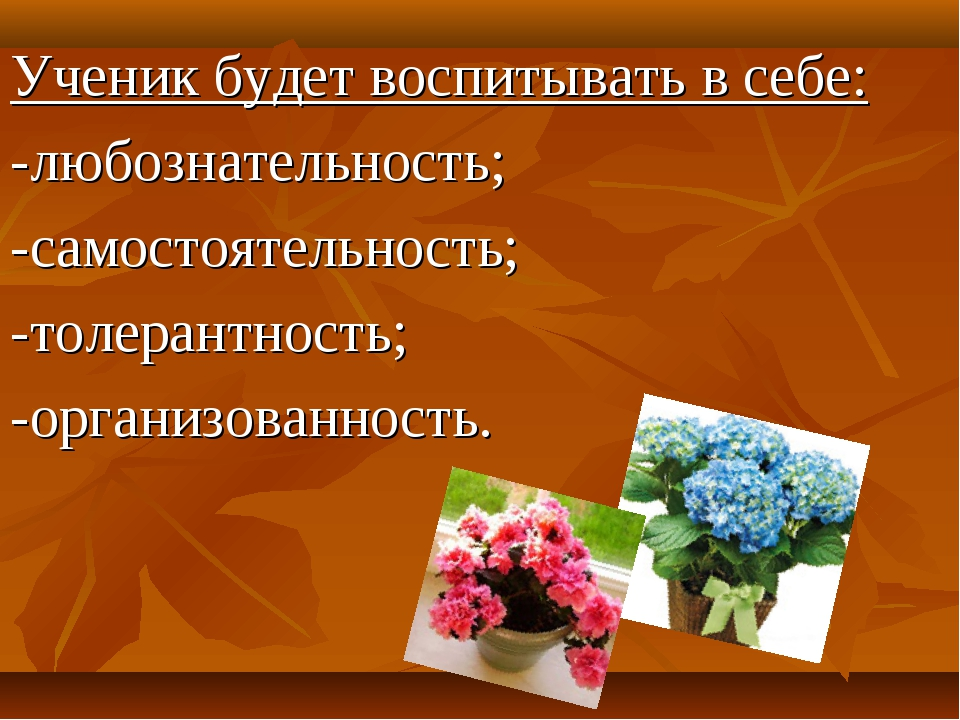 Ученик будет воспитывать в себе: -любознательность; -самостоятельность; -толе...