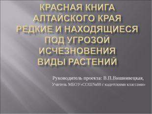 Руководитель проекта: В.П.Вишнивецкая, Учитель МБОУ«СОШ№88 с кадетскими класс