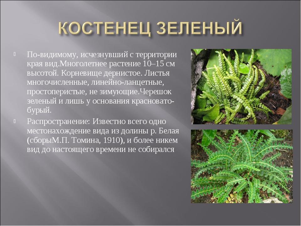 По-видимому, исчезнувший с территории края вид.Многолетнее растение 10–15 см...