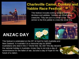 Charleville Camel, Donkey and Yabbie Race Festival This festival includes exi