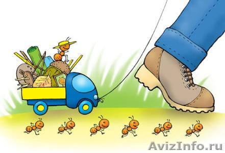 http://voronezh.avizinfo.ru/content/files/russia/201110/f_assistent04_20111910110554.jpg