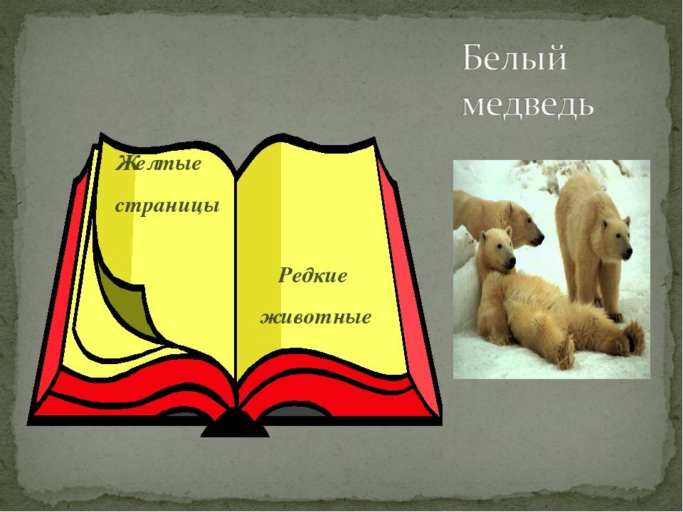 Желтые страницы Редкие животные