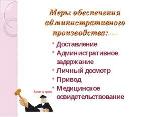 Меры обеспечения административного производства:15.docx Доставление Администр