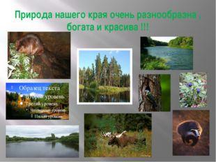 Природа нашего края очень разнообразна , богата и красива !!!