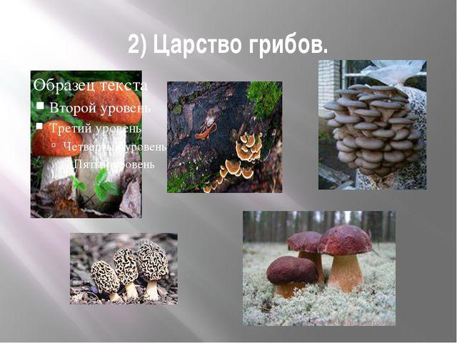 2) Царство грибов.