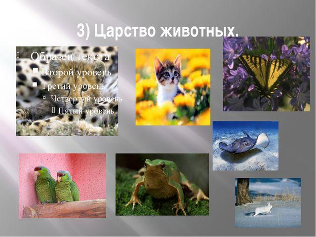 3) Царство животных.