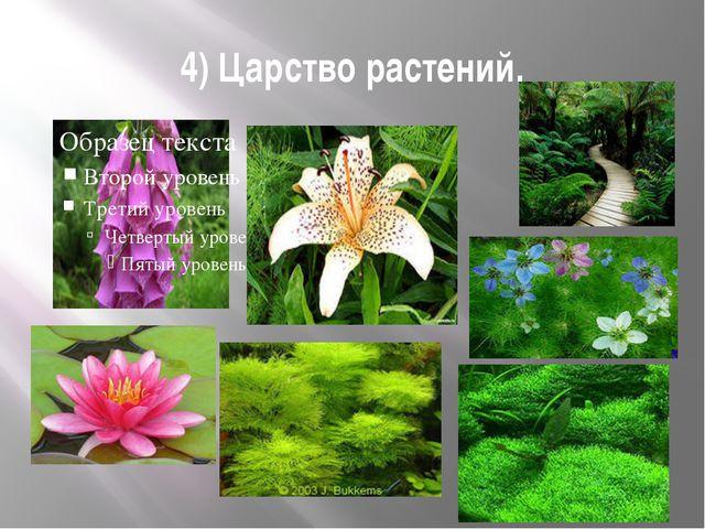 4) Царство растений.
