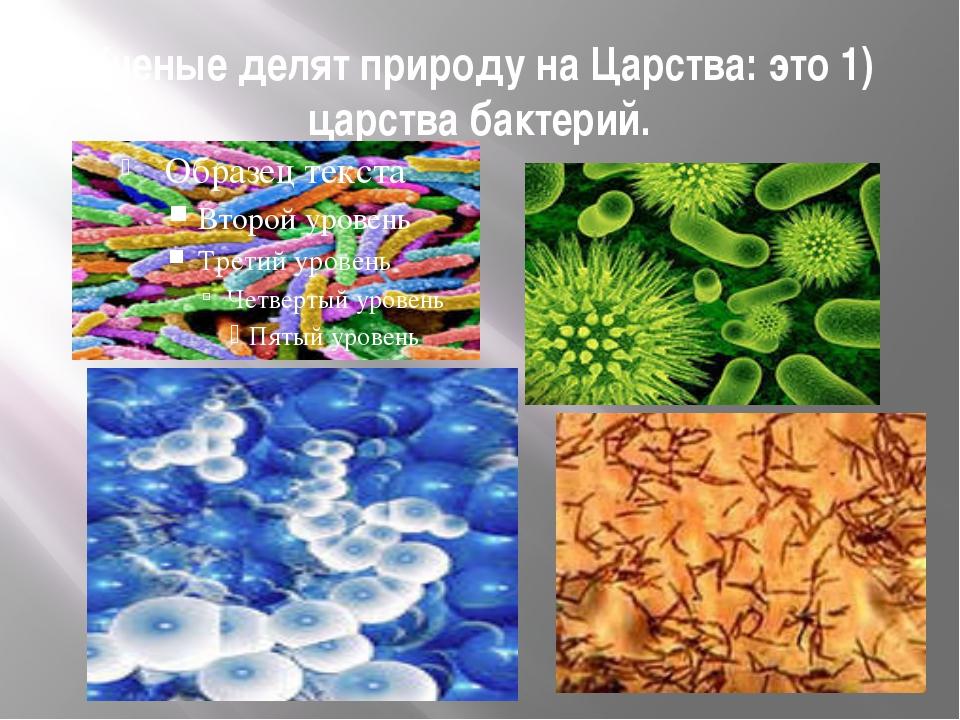 Ученые делят природу на Царства: это 1) царства бактерий.