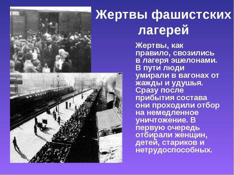 Жертвы фашистских лагерей Жертвы, как правило, свозились в лагеря эшелонами....