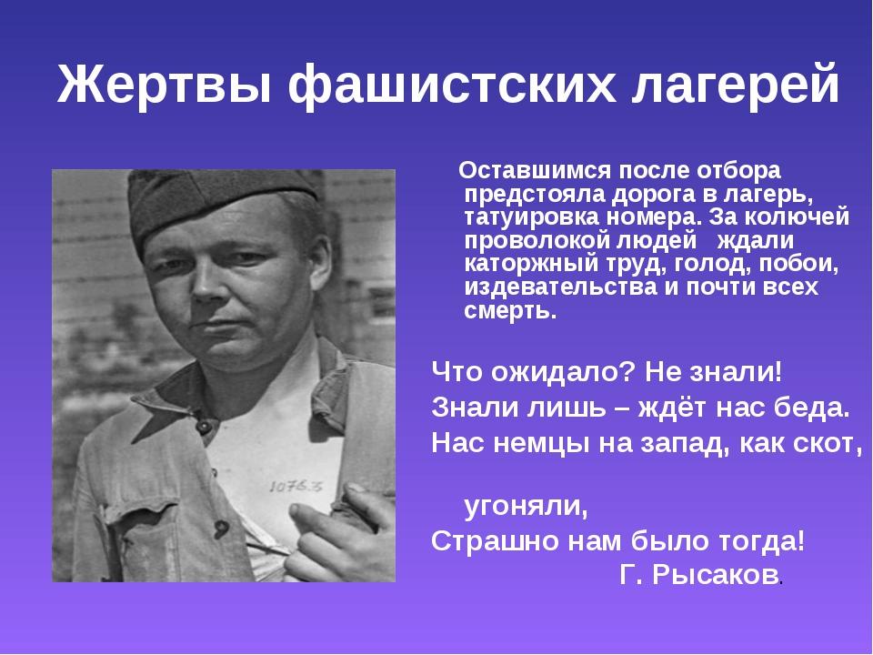 Жертвы фашистских лагерей Оставшимся после отбора предстояла дорога в лагерь,...