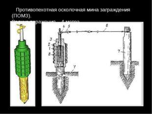 Противопехотная осколочная мина заграждения (ПОМЗ). Радиус поражения – 4 мет