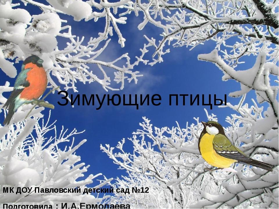 МК ДОУ Павловский детский сад №12 Подготовила : И.А.Ермолаева Зимующие птицы