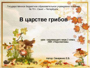 Государственное бюджетное образовательное учреждение гимназия № 70 г. Санкт –
