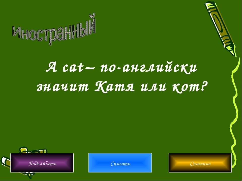 Подглядеть Списать Спасение A cat – по-английски значит Катя или кот?