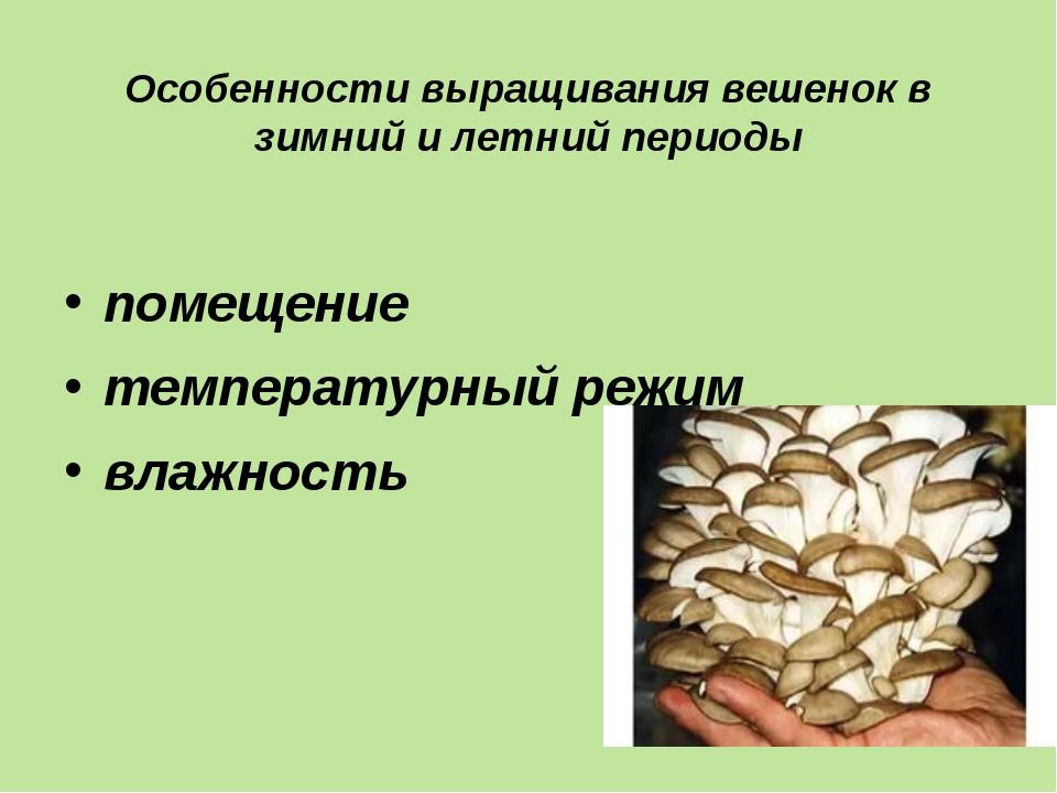 Особенности выращивания вешенок в зимний и летний периоды помещение температу...