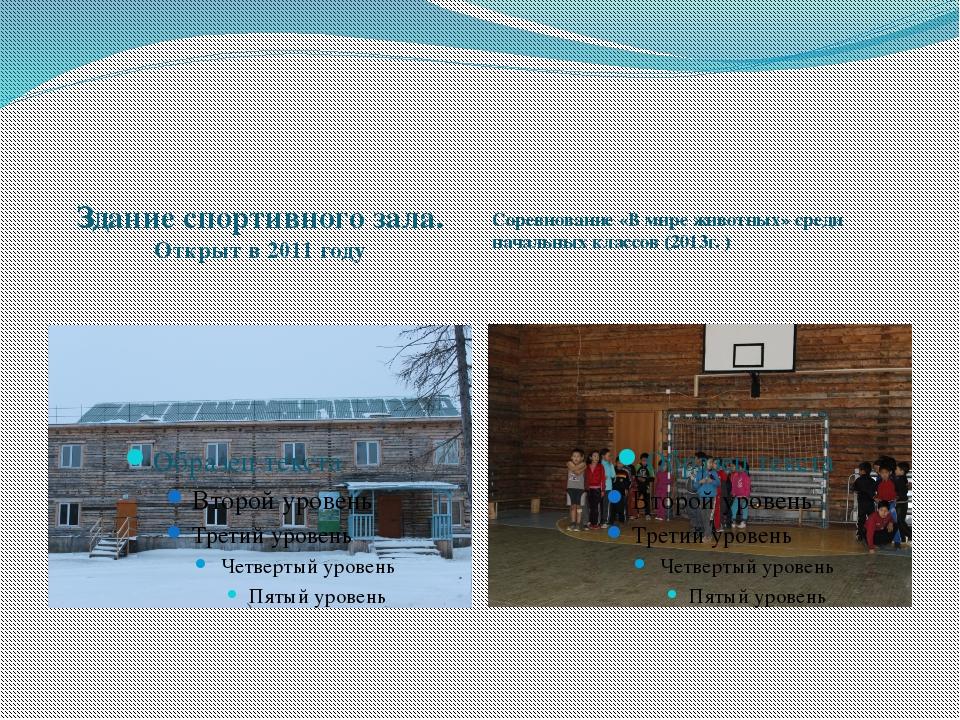Здание спортивного зала. Открыт в 2011 году Соревнование «В мире животных» с...