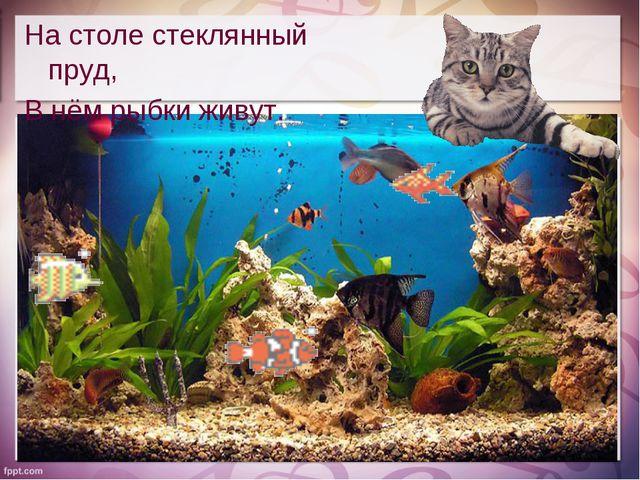 На столе стеклянный пруд, В нём рыбки живут.