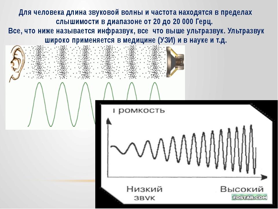 Для человека длина звуковой волны и частота находятся в пределах слышимости в...