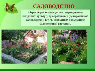 САДОВОДСТВО Отрасль растениеводства; выращивание плодовых культур, декоративн