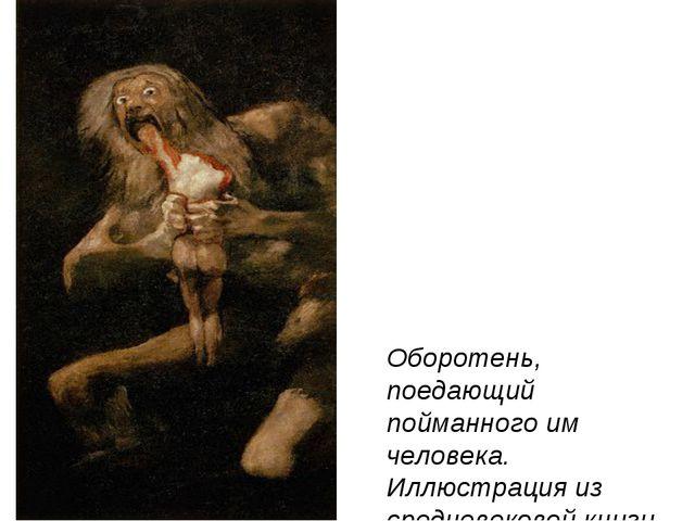 Оборотень, поедающий пойманного им человека. Иллюстрация из средневековой кн...