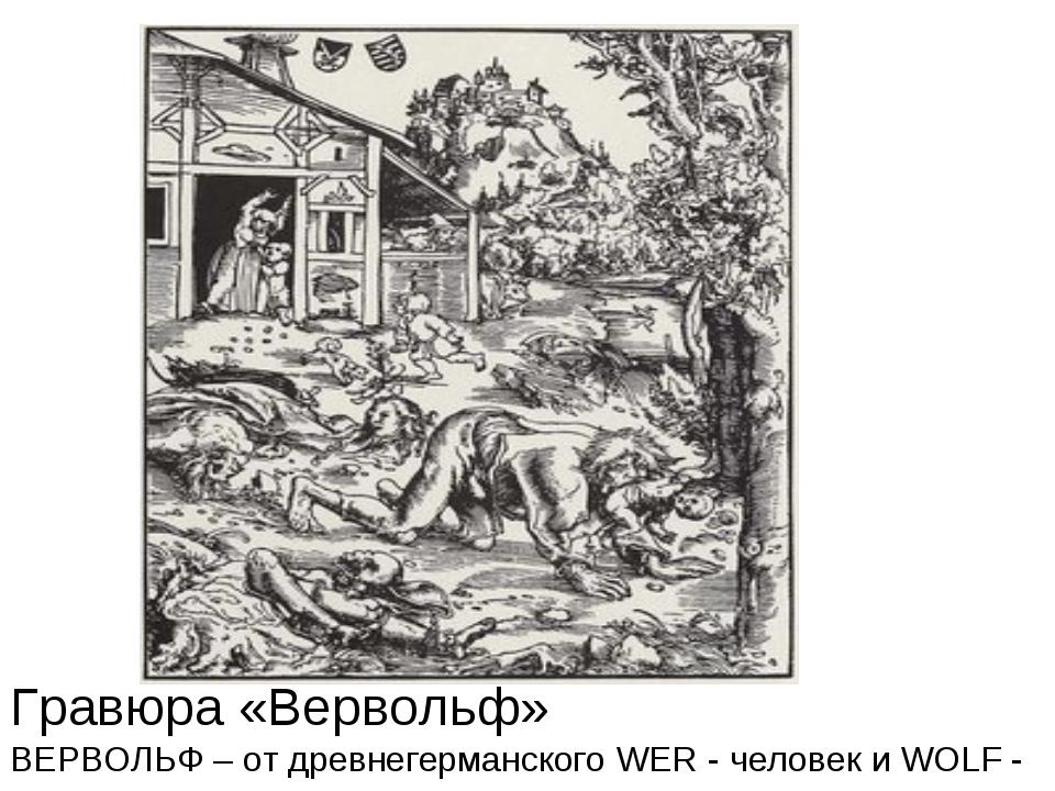 Гравюра «Вервольф» ВЕРВОЛЬФ – от древнегерманского WER - человек и WOLF - волк