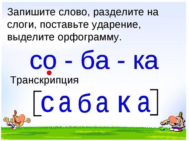 Запишите слово, разделите на слоги, поставьте ударение, выделите орфограмму....