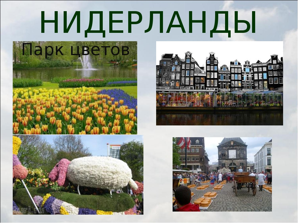 НИДЕРЛАНДЫ Парк цветов