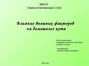 МБОУ Окино-Ключевская СОШ Влияние внешних факторов на домашнего кота Работу в