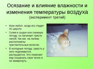 Осязание и влияние влажности и изменения температуры воздуха (эксперимент тре
