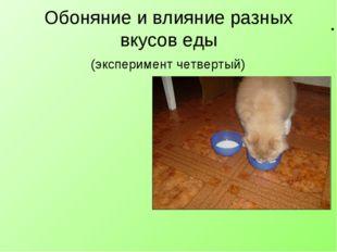 Обоняние и влияние разных вкусов еды (эксперимент четвертый) Обоняние у моего