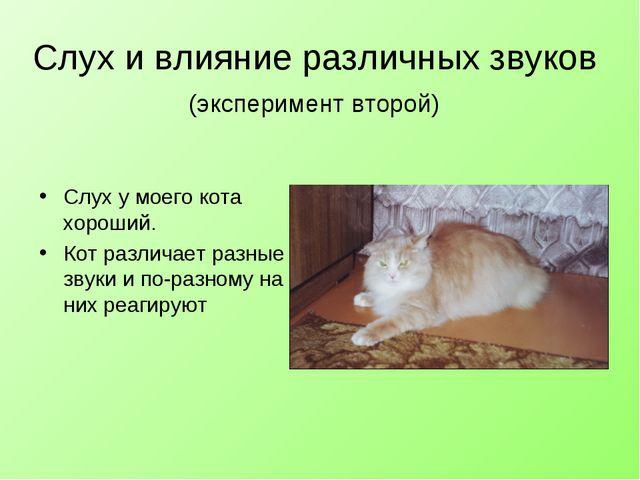 Слух и влияние различных звуков (эксперимент второй) Слух у моего кота хороши...